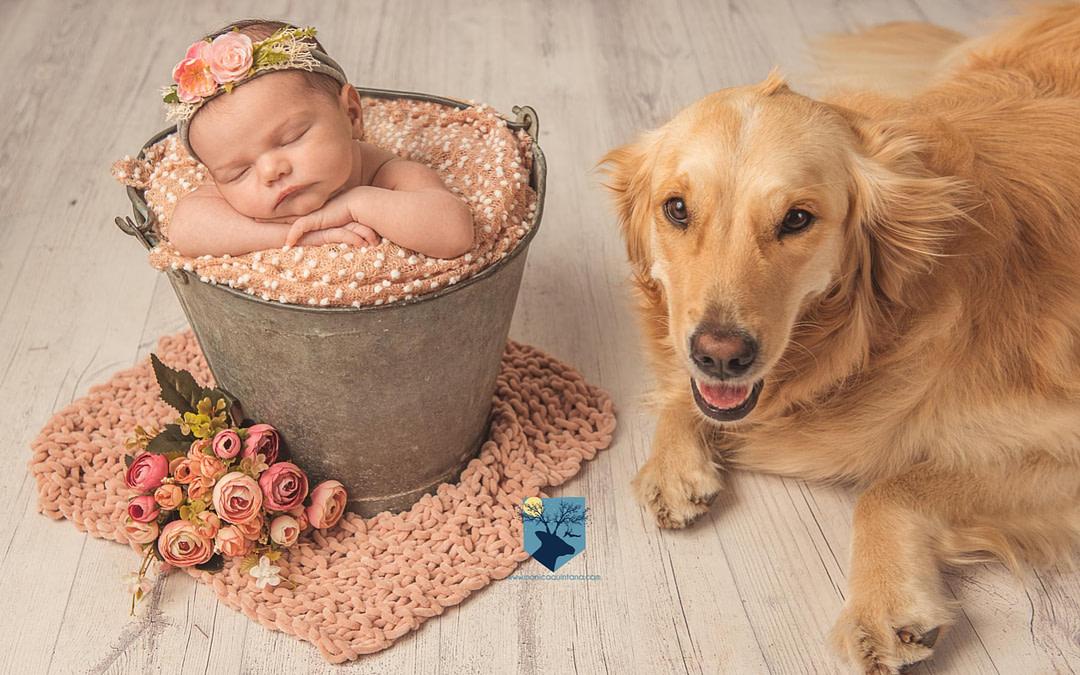 Fotos a recién nacida y su mascota